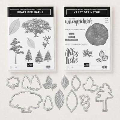 Produktpaket Kraft Der Natur (Für Transparente Blöcke)