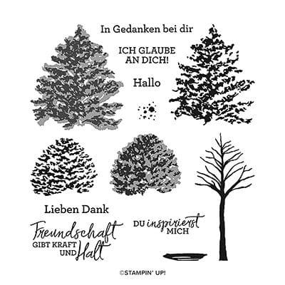 Stempelset Klarsicht Wunderbare Freundschaft (Deutsch)